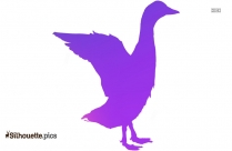 Goose Bird Color Silhouette