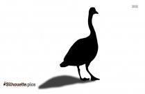 Image Of Kiwi Bird Silhouette