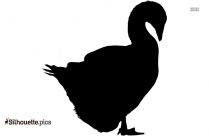 Goose Silhouette Vector Color Image