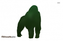 Gorilla Silhouette Illustration