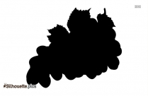 Grapes Fruit Silhouette Drawing