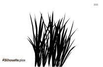 Grass Silhouette Illustration Image