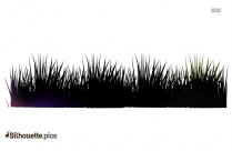 Grass Stalks Silhouette Image And Vector