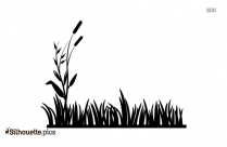 Grass Vector Illustration Silhouette Background