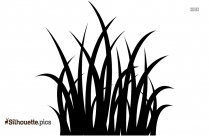 Grass Stalk Vector Silhouette