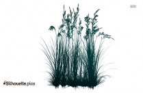 Swamp Grass Vector