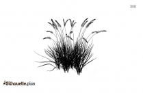 Grass Vector Silhouette Image