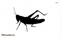 Grasshopper Silhouette Cricket Bug