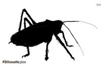Grasshopper Silhouette Illustration