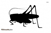 Grasshopper Silhouette, Insect Clipart Image