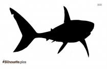 Great White Shark Vector Image Silhouette