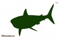 Shark Diving Vector Image
