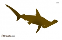 Great White Shark Pictures Cliparts Silhouette