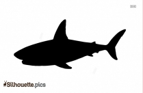White Beaked Dolphin Silhouette