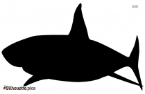 Great White Shark Silhouette Image For Free