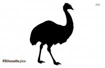 Rhea Bird Silhouette