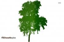 Cartoon Summer Tree Silhouette