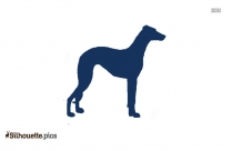 Miniature Dachshund Puppy Silhouette