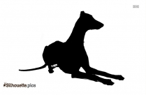 Greyhound Pictures Free Download Silhouette