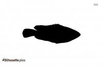 Cute Turtle Black And White Clip Art Silhouette