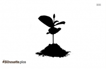 Tomato Plant Drawing Silhouette Clip Art