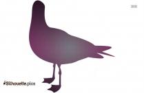 Parrot Vector Silhouette