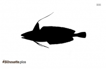 Mahi Mahi Fish Silhouette Black And White