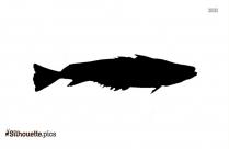 Hake Fish Silhouette Drawing