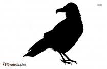 Cute Cartoon Birds Silhouette Background