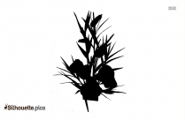Orchid Flower Silhouette Image
