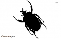 Ladybird Beetle Drawing Cartoon Silhouette