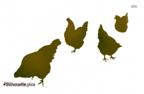 Hen Eating Food Silhouette Illustration
