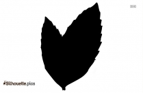 Herbs Clipart Mint Leaf Silhouette