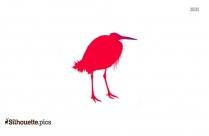 Vulcher Bird Image Silhouette