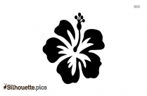 Hibiscus Flower Silhouette Images, Pictures