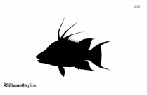 Barb Fish Aquarium Silhouette