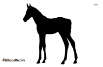 Horse Cartoon Silhouette Vector And Graphics