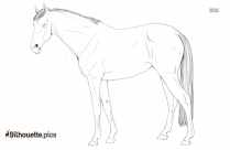 Horse Drawing Silhouette