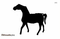 Horse Outline Silhouette