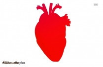 Human Heart Silhouette Illustration