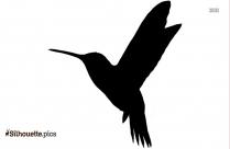 Robin Bird Vector Silhouette Image