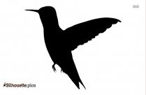 Hummingbird Silhouette Vector Image