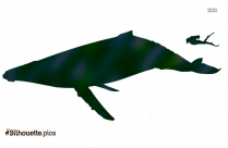 Whale Silhouette Vector Clipart