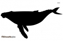 Angelfish PNG Transparent Silhouette