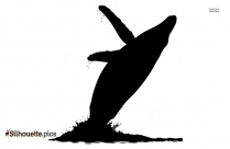 Grey Reef Shark Silhouette