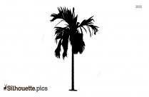 Palm Tree Silhouette Black Image