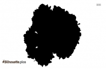 Hydrangea Silhouette Vector And Graphics
