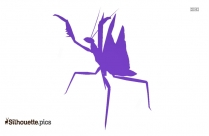 Image Giant Mantis Clipart