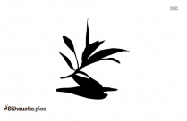 Image Of Olive Leaf Clipart Silhouette