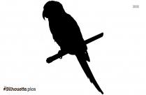Parrot Silhouette Free Vector Art